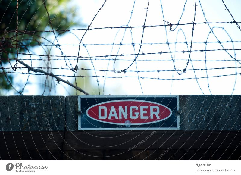 danger sign under barbed wire fence Danger of Life Sign Building Wire Entrance barred Fence Coil Wall (building) Wall (barrier) Cement Red Safety (feeling of)