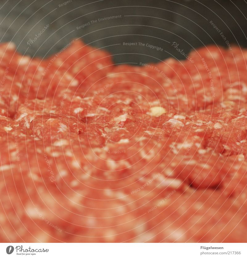 Peter Hacke Food Meat Sausage Nutrition Minced meat more minced Colour photo Interior shot Blur Raw Meat dishes Meat scare Background picture Copy Space middle