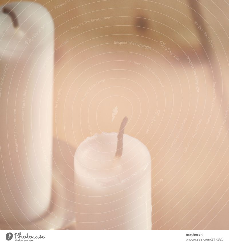 White Wood Warmth Bright Candle Decoration Harmonious Wooden floor Candlewick Floorboards Candle holder