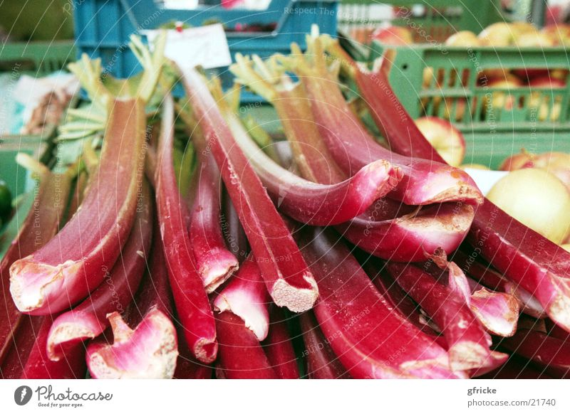 Red Healthy Vegetable Markets Vegetarian diet Rhubarb