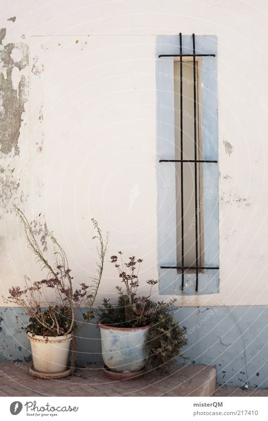 White Blue Calm Wall (building) Window Facade Esthetic Change Decline Balcony Plaster Portugal Backyard Shriveled