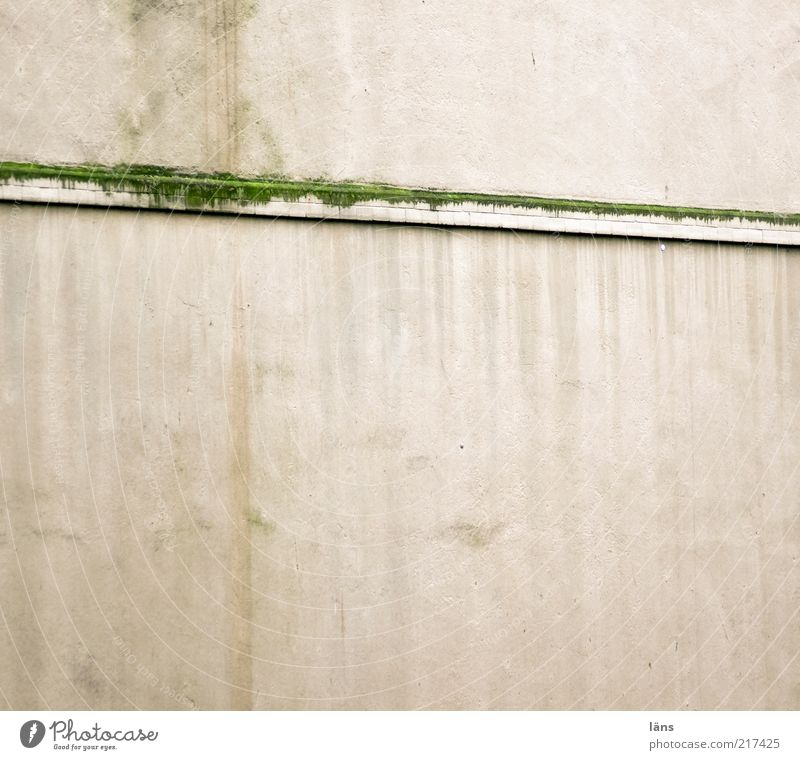[HH10.1] - Biotope Moss House (Residential Structure) Wall (barrier) Wall (building) Facade Cornice Old Dirty Colour Change Plastered Tracks Mold Green
