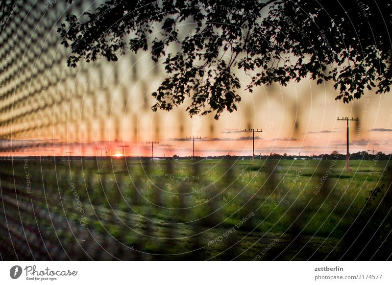 Close Tegel! TXL Airport Berlin-Tegel Airfield Grating Fence Wire netting fence Metalware Sun Sunset Horizon Far-off places Meadow Pasture Grass Copy Space