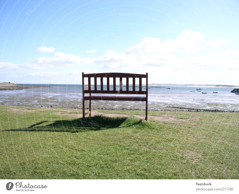 lonely beauty Scotland Great Britain Coast Beach Green Ocean holy island still life Bench Lawn Blue Water