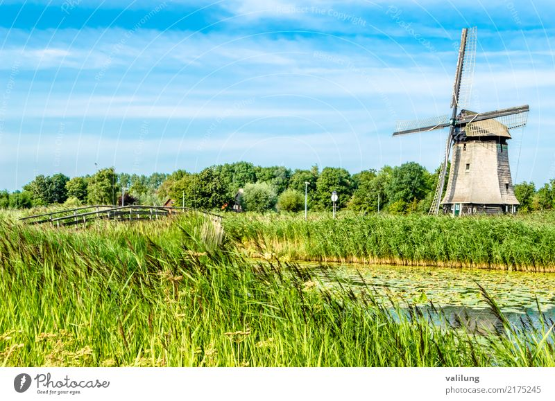 Traditional Dutch windmill Vacation & Travel Tourism Landscape Park Building Architecture Green Alkmaar Europe Netherlands colorful field Mill Windmill canal