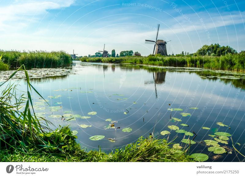 Traditional Dutch windmill Vacation & Travel Tourism Landscape Park River Building Architecture Green Alkmaar Europe Netherlands canal colorful field Mill