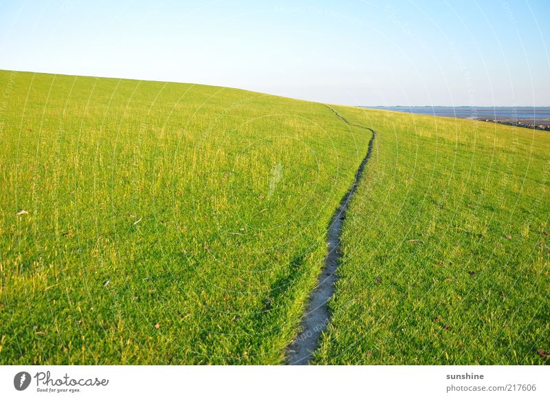 The way Landscape Sky Cloudless sky Summer Beautiful weather Grass Meadow Hill Coast North Sea Contentment Colour photo Exterior shot Day Light
