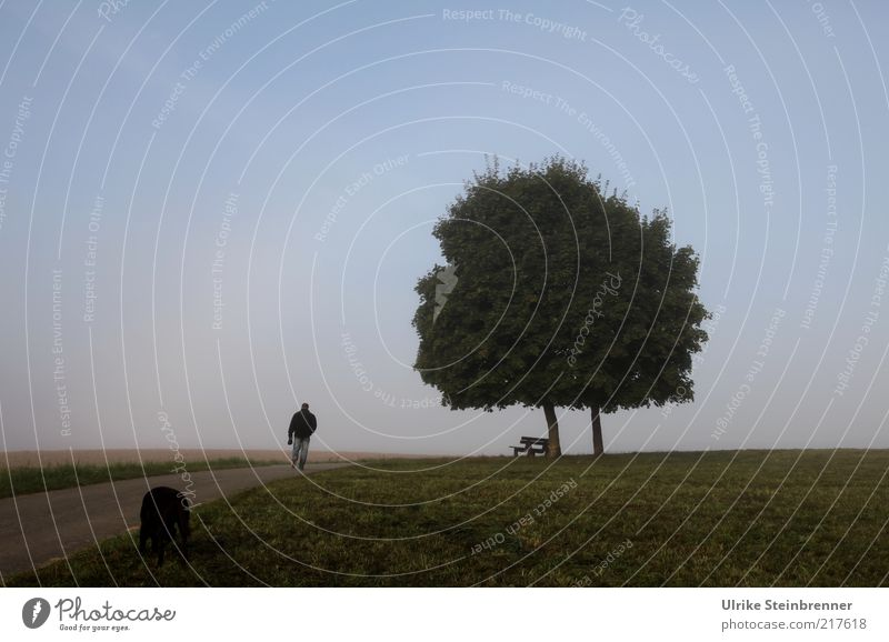 Human being Sky Dog Nature Tree Animal Calm Street Landscape Life Meadow Autumn Grass Lanes & trails Going Field