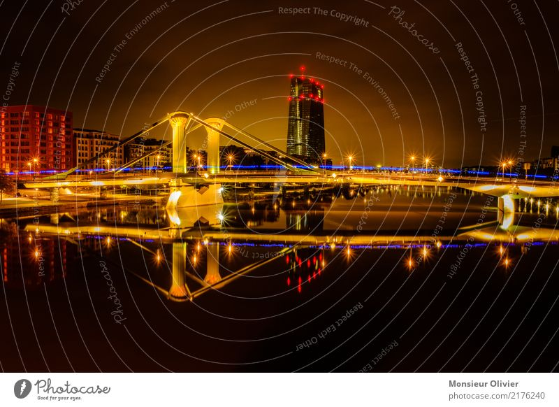 Blue light at the ECB Skyline Frankfurt High-rise Town City River Main Hesse Germany Bank building Banking district Night Morning Dawn Architecture