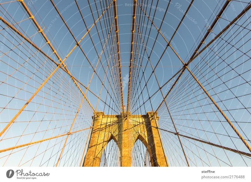 Town USA Bridge Rope Manmade structures Tourist Attraction Landmark Net Famousness Spider's web Manhattan New York City Brooklyn Wire cable Brooklyn Bridge