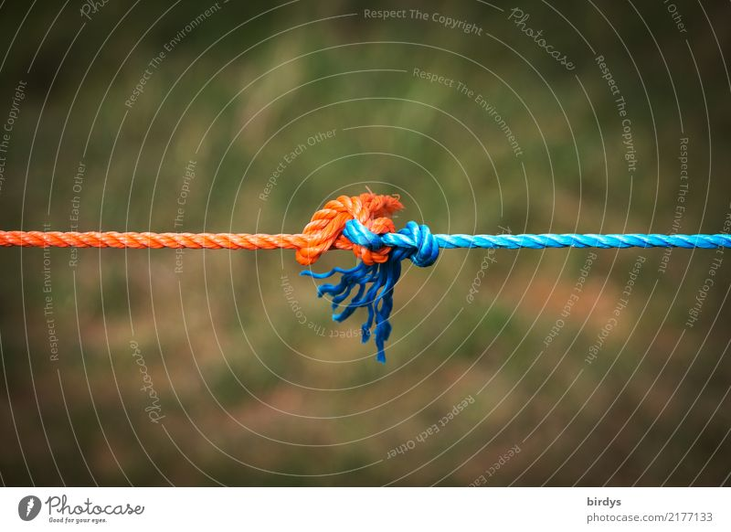 Withstand voltage together Rope Line Knot To hold on Simple Together Positive Blue Orange Optimism Power Trust Love Loyalty Solidarity Endurance Stress