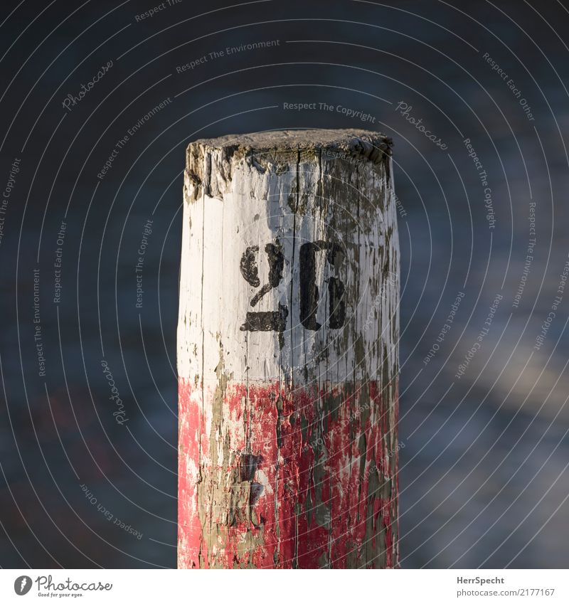 26 Navigation Harbour Yacht harbour Wood Digits and numbers Old Esthetic Broken Red Black White Wooden stake Flake off Decline Paints and varnish Tree trunk