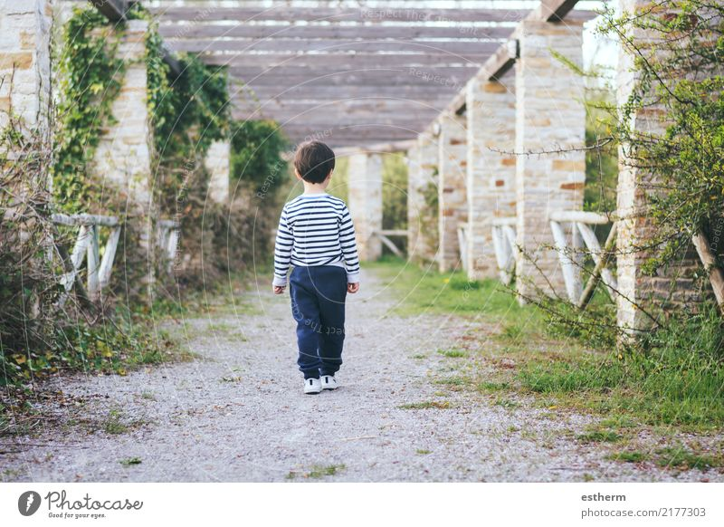 child walking on a road Lifestyle Human being Masculine Child Toddler Boy (child) Infancy 1 3 - 8 years Nature Spring Garden Park Field Walking