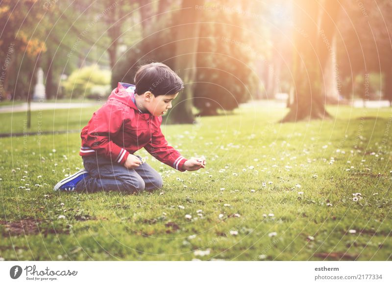 boy sitting in the park in spring Child Human being Nature Plant Flower Joy Environment Lifestyle Spring Love Emotions Boy (child) Garden Think