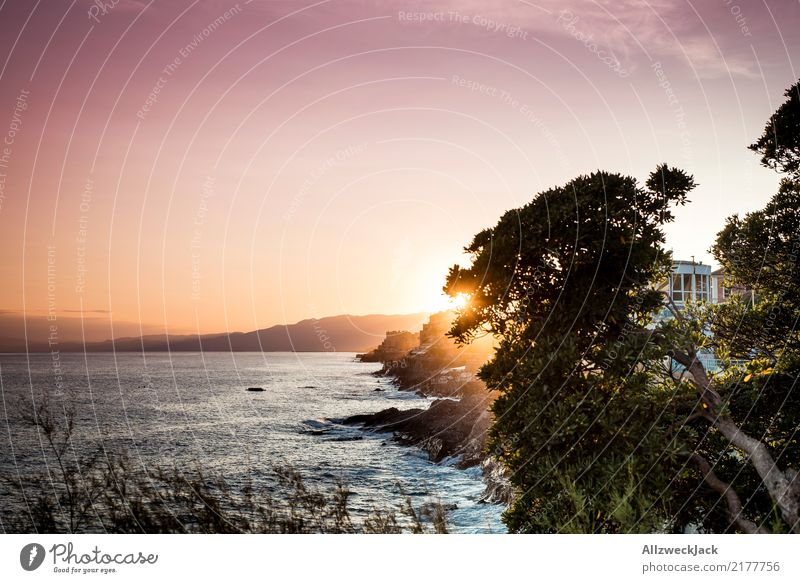 desktop background Contentment Calm Vacation & Travel Tourism Trip Adventure Far-off places Sightseeing City trip Summer Summer vacation Ocean Night life Water