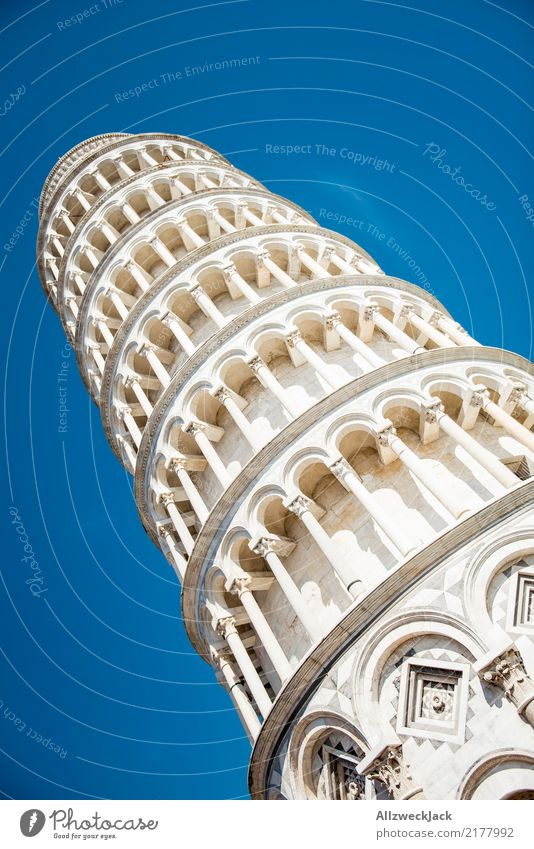 in Pisa Day Summer Blue sky Sky Cloudless sky Italy Tower Tilt Manmade structures Tourist Attraction Tall Tumble down Landmark Deserted