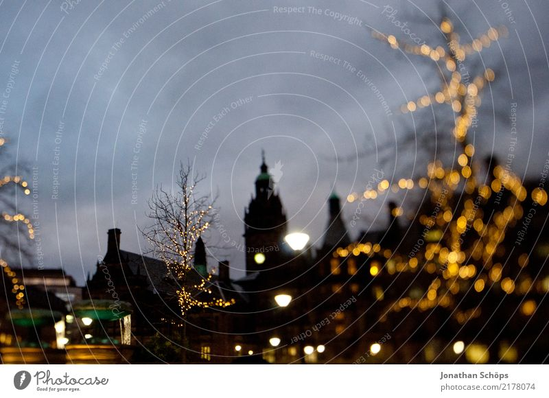 Sheffield in winter at night Town Esthetic England Great Britain Night Twilight Silhouette Christmas & Advent Christmas tree Christmas decoration Christmas Fair