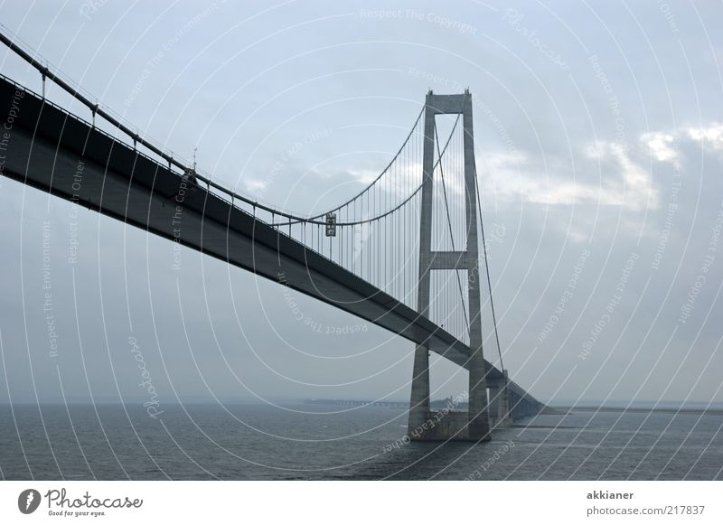 Nature Water Sky Ocean Clouds Gray Bright Fog Environment Wet Bridge Connection Steel Manmade structures Steel cable Elements