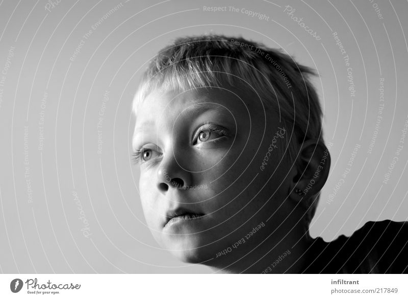 you're looking. Child Boy (child) Infancy Head Face 1 Human being 3 - 8 years Observe Think Looking Dream Curiosity Gray Black White Serene Patient Calm