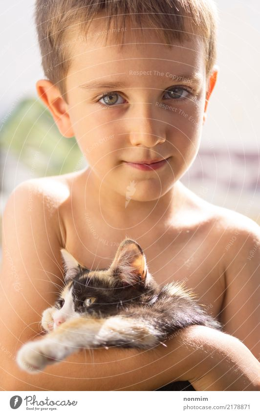 A boy posing with a kitten Cat Child Summer Animal Warmth Love Boy (child) Small Together Friendship Infancy Cute Illuminate Pet Hot Delightful