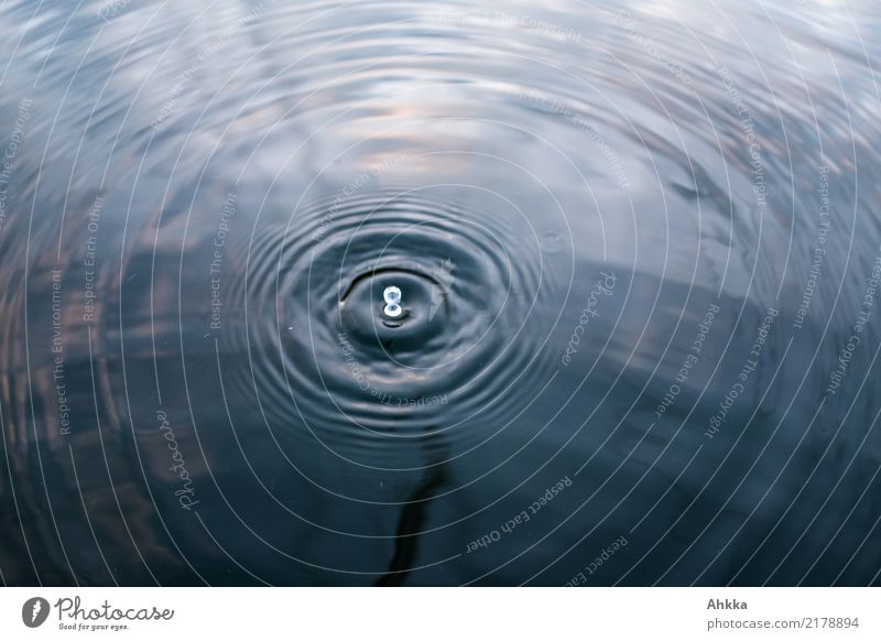 Water Relaxation Calm Moody Wild Glittering Energy industry Esthetic Fresh Drops of water Circle Change Elements Wellness Well-being Harmonious