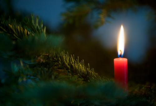 ...a little light is burning Feasts & Celebrations Festive Festive Lighting Candlelight Candle flame Candlelit ambience Christmas tree Fir branch Fir needle