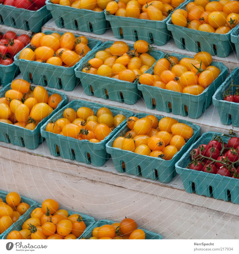 Blue Red Yellow Food Fresh Arrangement Vegetable Tomato Organic produce Bowl Goods Verdant Containers and vessels Stalls and stands Product Vegetarian diet