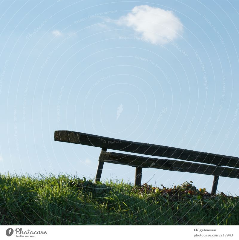 substitution bench Vacation & Travel Trip Bench Park Sky Clouds Park bench Colour photo Exterior shot Day Sunlight Deserted Old Meadow