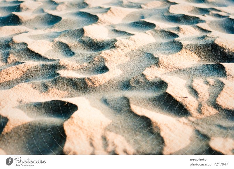 Nature Blue Red Beach Yellow Warmth Sand Wind Clean Tracks Infinity Beach dune Beautiful weather Blow Copy Space