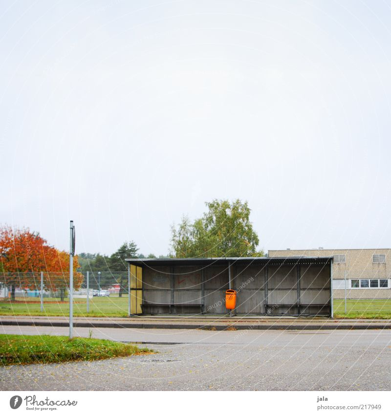 bus stop Sky Autumn Plant Tree Building Bus stop Shelter Transport Public transit Street Gloomy Trash container Colour photo Exterior shot Deserted