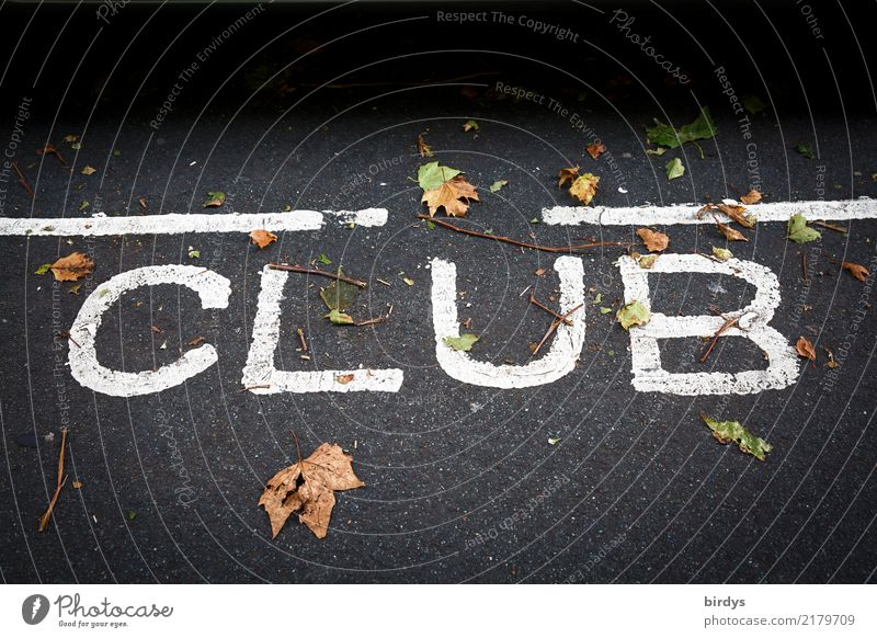 clubbing Night life Event Club Disco Going out Feasts & Celebrations Clubbing Autumn leaves Characters Line Positive Yellow Gray Black White Joy Together