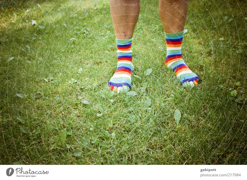 Human being Man Life Meadow Grass Feet Legs Fashion Adults Masculine Esthetic Hair Lawn Uniqueness Joie de vivre (Vitality)