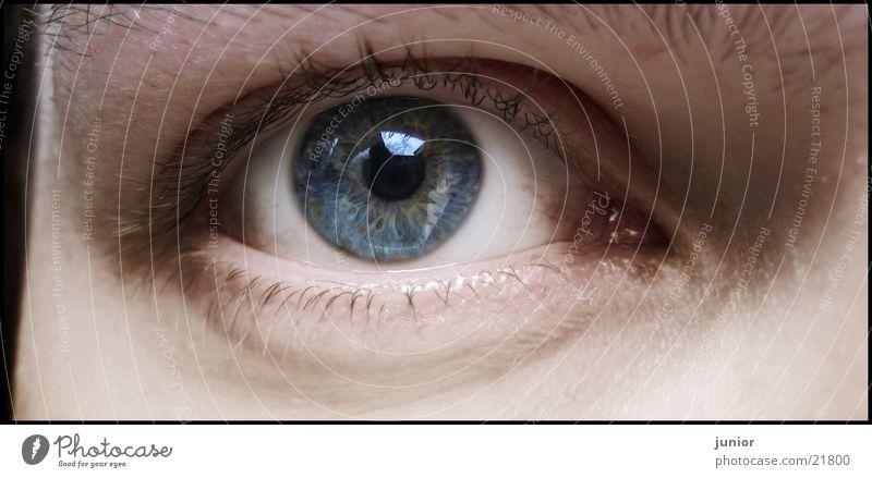 Man Face Eyes Self portrait Iris