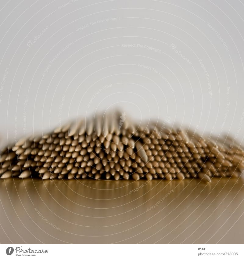 Pieces 2 Collection Wood Thorny Perspective Colour photo Copy Space top Copy Space bottom Blur Shallow depth of field Heap Toothpick Consecutively Lie Stack