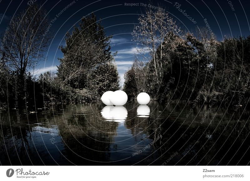 silence Environment Nature Landscape Water Tree Foliage plant Brook River Balloon Driving Dream Esthetic Dark Elegant Cold Kitsch Blue White Calm Contentment