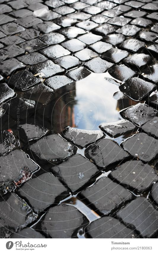 Head-stone-picture. Stone Water Simple Blue Gray Black White Paving stone Cobbled pathway Puddle Colour photo Exterior shot Deserted Day Reflection