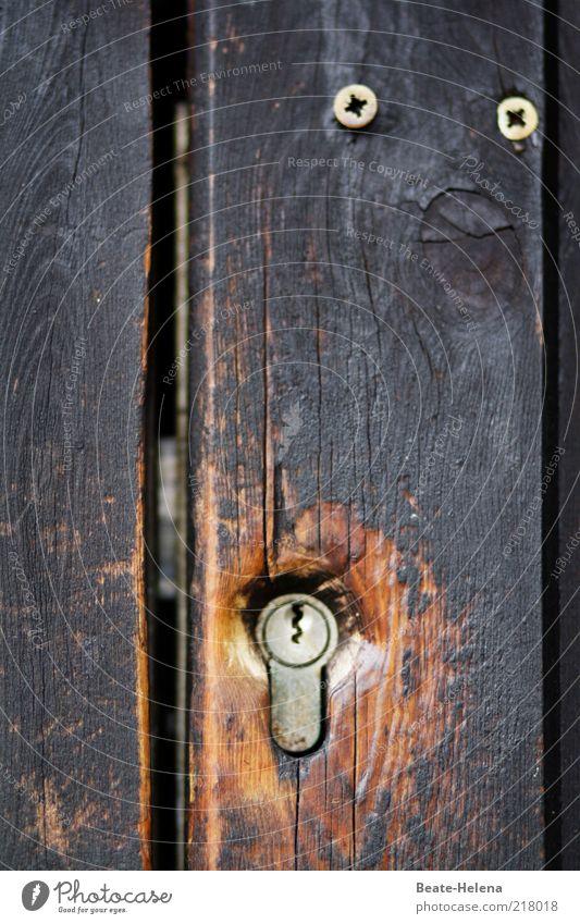 Calm Wood Brown Fear Door Closed Safety Dangerous Protection Smart Screw Wood grain Second-hand Attentive Keyhole Door lock