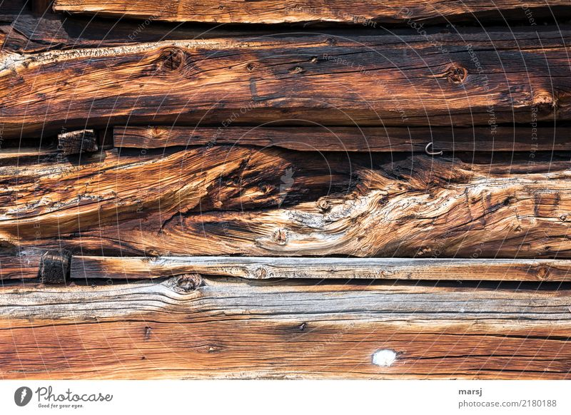 Not all wood Harmonious Relaxation Calm Manmade structures Wall (barrier) Wall (building) Wooden wall Old Exceptional Authentic Together Uniqueness Brown