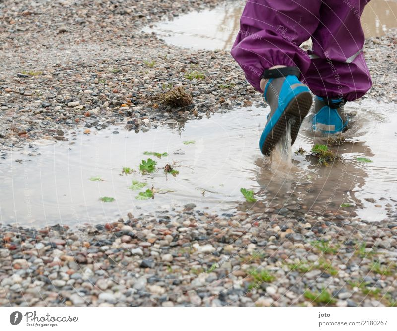 pond time Leisure and hobbies Playing Vacation & Travel Trip Adventure Freedom Child Toddler 1 Human being 1 - 3 years Nature Autumn Rain Lanes & trails