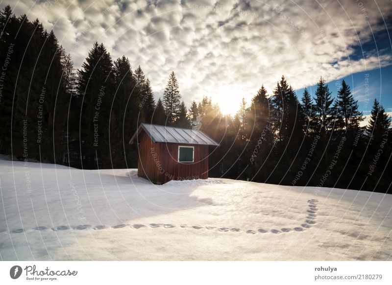morning sunrise over cabin in winter alpine forest and snow Vacation & Travel Sun Winter Snow Mountain Hiking House (Residential Structure) Nature Landscape Sky