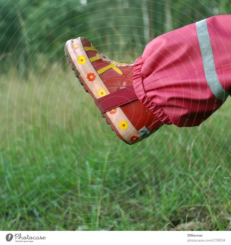 Child Nature Beautiful Girl Red Meadow Playing Landscape Environment Grass Style Rain Feet Pink Wet Leisure and hobbies