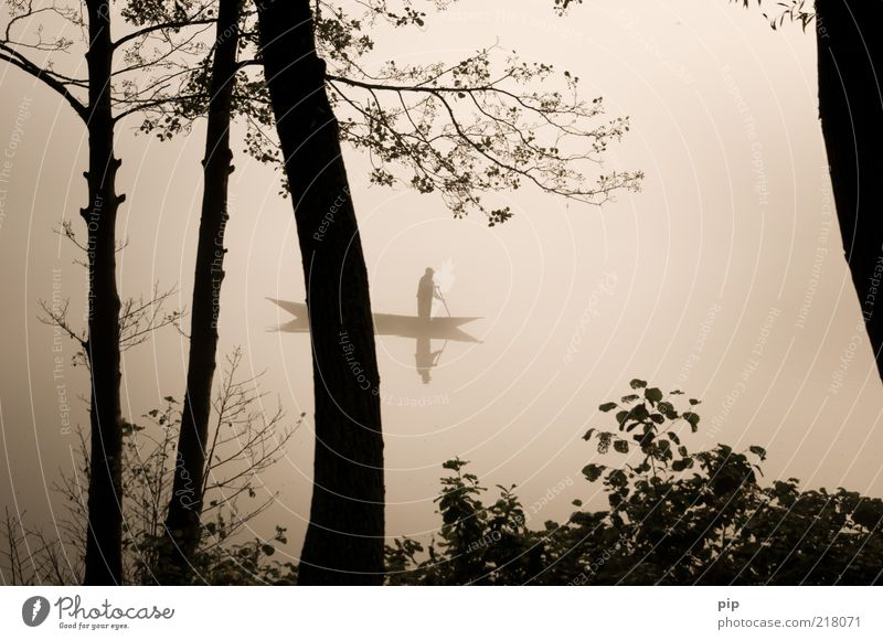 drift cloudy Man Adults Arm 1 Human being Water Autumn Fog Tree Branch Leaf Lakeside Rowboat Watercraft Paddle Movement Infinity Gloomy Serene Calm Contentment