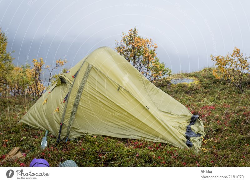 Tent in storm and rain in an autumn landscape Vacation & Travel Adventure Camping Nature Autumn Bad weather Storm Wind Gale Rain Scandinavia Broken Wild Green