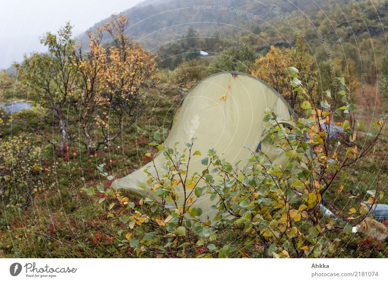 Tent in autumn storm, Norway Adventure Camping Nature Autumn Climate Bad weather Storm Gale Rain Wet Wild Protection Colour photo Exterior shot Deserted