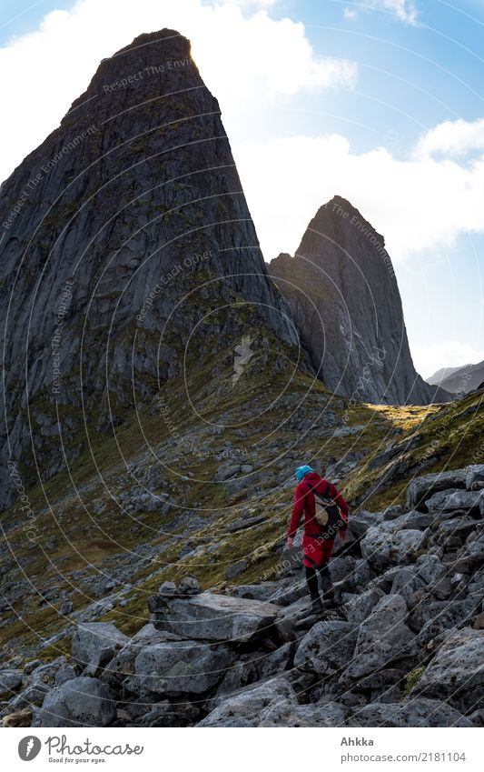 Gipfelsturm, Norway Athletic Adventure Far-off places Freedom Mountain Hiking 1 Human being Elements Rock Peak Lofotes Exceptional Dark Fantastic Gigantic Large