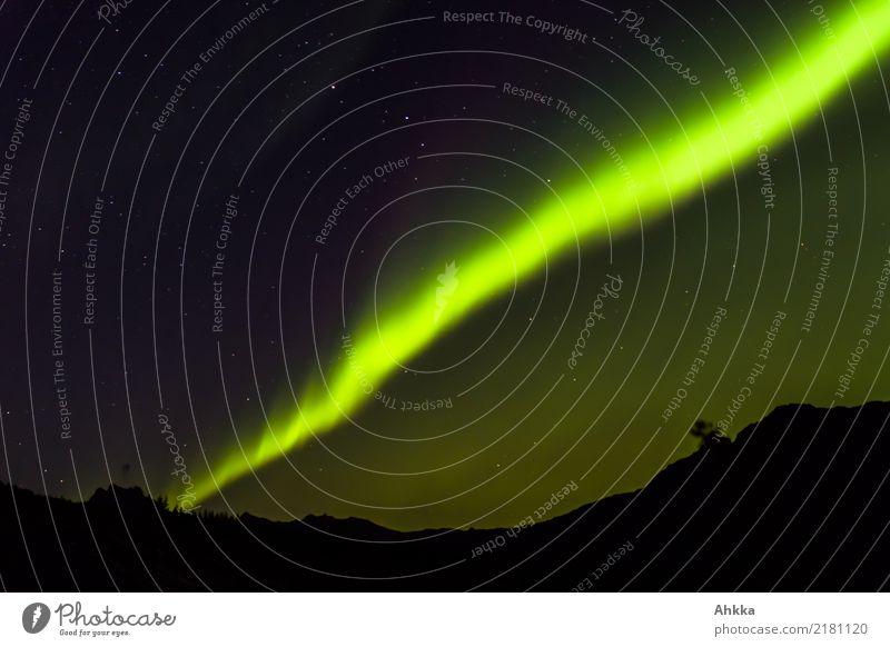 Northern lights divides the sky Vacation & Travel Adventure Night sky Stars Aurora Borealis Mountain Lofotes Line Illuminate Esthetic Dark Fantastic Gigantic