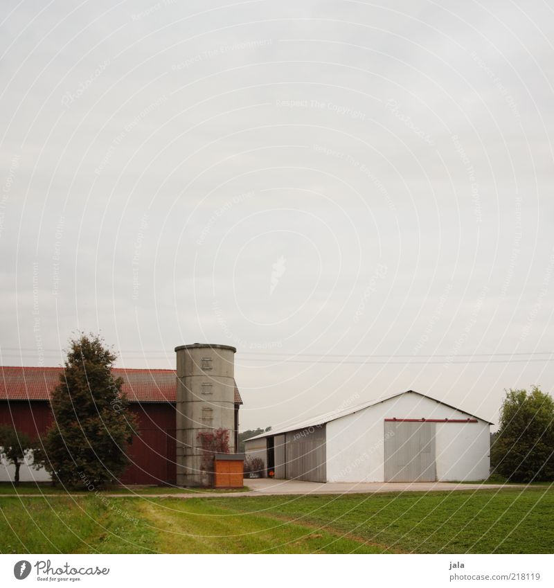 agricultural enterprise Sky Tree Grass Field Village Manmade structures Building Hall Farm Silo Gloomy Colour photo Exterior shot Deserted Copy Space top