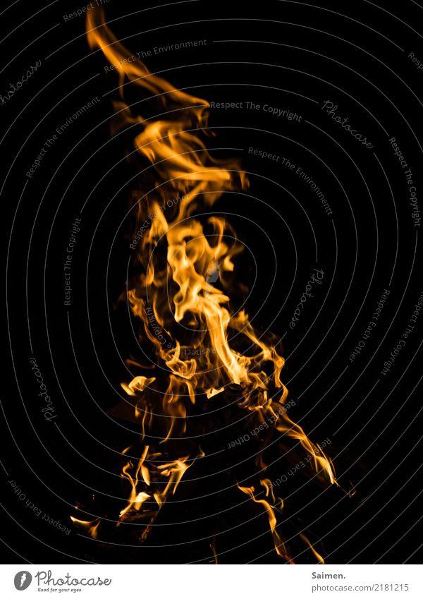 Flammen Feuer brennen schwarz rot heiß Hitze Colour photo Lagerfeuer leuchten scheinen