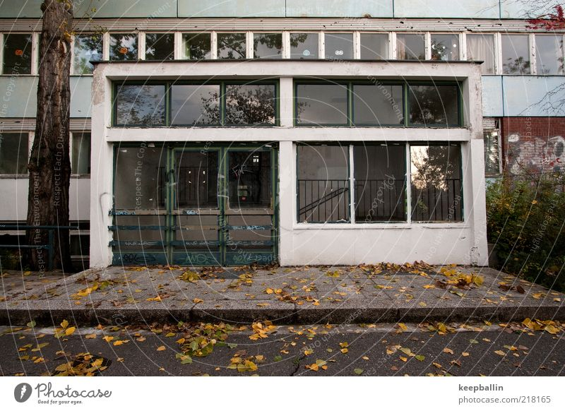 Dirty Architecture Facade School building Gloomy Broken Decline Past Entrance Shabby Autumn leaves Schoolyard Front door Glazed facade