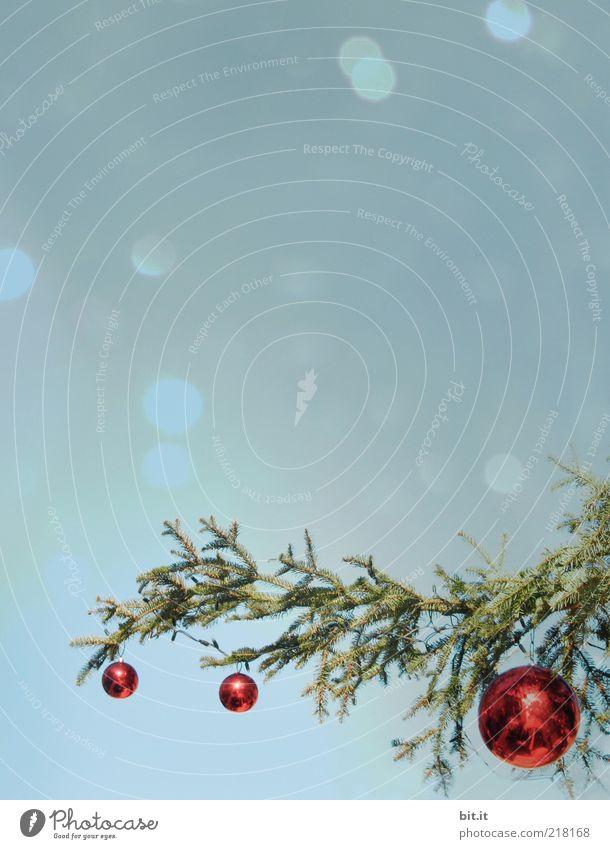 Christmas & Advent Beautiful Red Winter Snow Feasts & Celebrations Glittering Glass Romance Christmas tree Kitsch Sphere Idyll Fir tree Trashy
